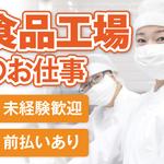 株式会社テクノ・サービス 広告No.442258