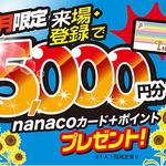 日研トータルソーシング株式会社 本社(3206)