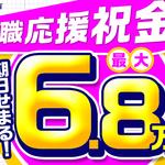 株式会社綜合キャリアオプション(1314VH0913G29★12)