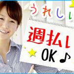 株式会社綜合キャリアオプション(1314VH0314G34★87)