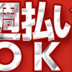 株式会社綜合キャリアオプション(1314VH1213G39★90)