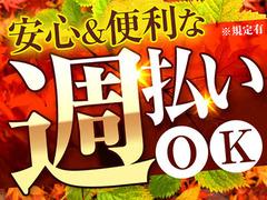 株式会社綜合キャリアオプション(1314VH1115G10★6)