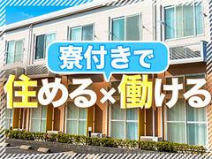 株式会社綜合キャリアオプション(1314VH0516G30★41)