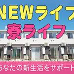 株式会社綜合キャリアオプション(1314VH1213G50★63)
