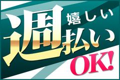 株式会社綜合キャリアオプション(1314VH0320G9★15)