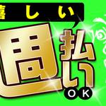 株式会社綜合キャリアオプション(1314VH0314G28★55)