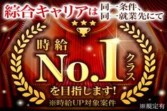 株式会社綜合キャリアオプション(1314VH0320G17★11)