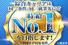 株式会社綜合キャリアオプション(1314VH1219G8★2)
