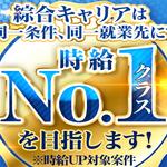 株式会社綜合キャリアオプション(1314VH0320G17★27)