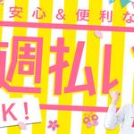 株式会社綜合キャリアオプション(1314VH0522G16★84)
