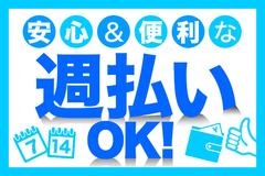 株式会社綜合キャリアオプション(1314VH0807G25★79)