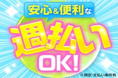 株式会社綜合キャリアオプション(1314VH0711G23★10)