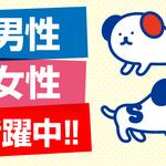 株式会社ホットスタッフ東大阪(お仕事No.180641020003)