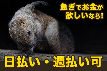 株式会社オマージュ(生駒郡安堵町エリア)のバイト写真2