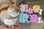 株式会社新通エスピー 家電販売のお仕事(尼崎市エリア)のバイト写真2