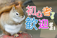 株式会社ナガハ(お仕事No.39052)