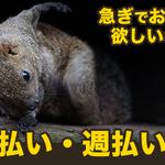 株式会社ナガハ(お仕事No.T19211)